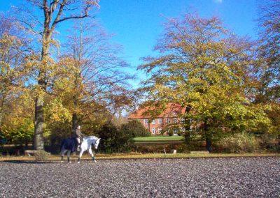 Herrenhaus Borghorst Dressurviereck